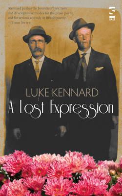 A Lost Expression - Salt Modern Poets (Paperback)