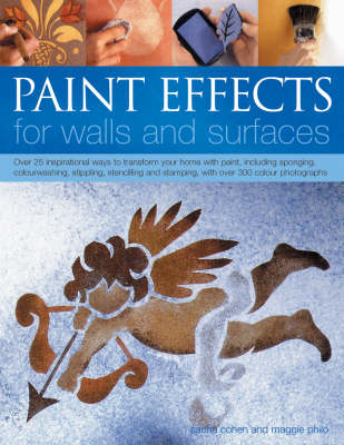 Paint Effects for Walls and Surfaces (Paperback)