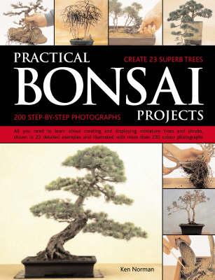 Practical Bonsai Projects (Paperback)