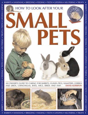 How to Look After Your Small Pets: An Owner's Guide to Caring for Rabbits, Guinea Pigs, Hamsters, Gerbils and Jirds, Chinchillas, Rats, Mice, Birds and Fish (Paperback)