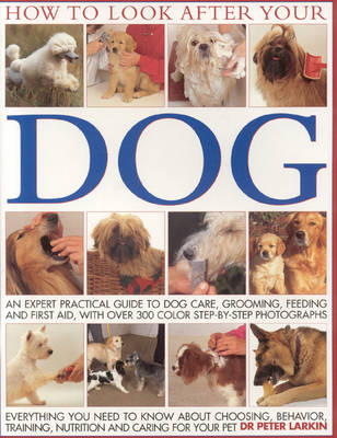 How to Look After Your Dog: An Expert Practical Guide to Dog Care, Grooming, Feeding and First Aid (Paperback)
