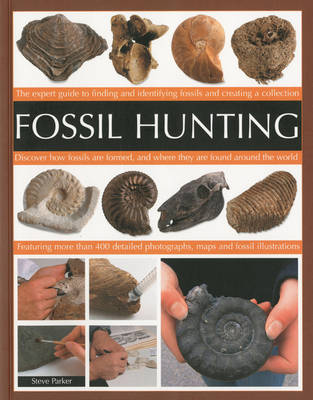 Fossil Hunting (Paperback)