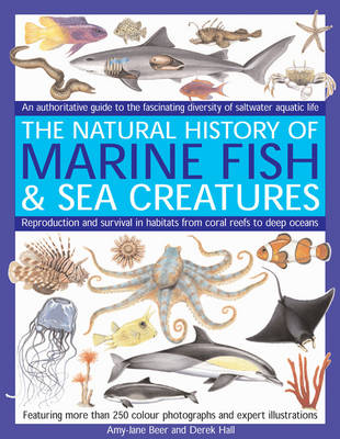 Marine Fish: An Authoritative Guide to the Fascinating Diversity of Saltwater Aquatic Life (Paperback)