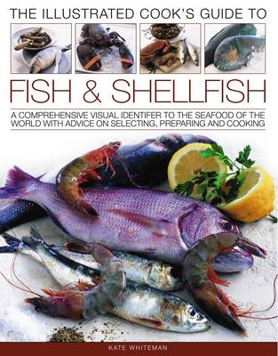 Illustrated Cook's Guide to Fish and Shellfish (Paperback)