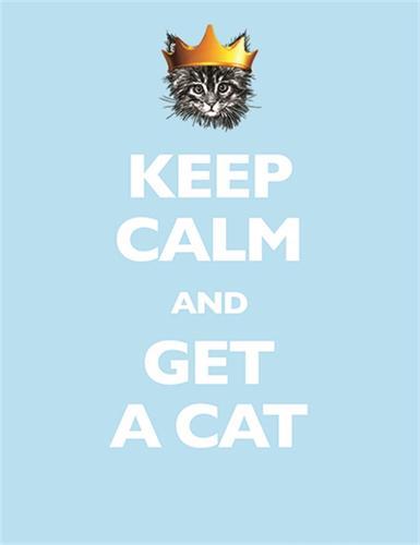 Keep Calm and Get a Cat (Hardback)