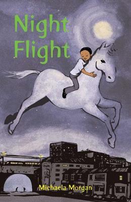 Night Flight (Paperback)