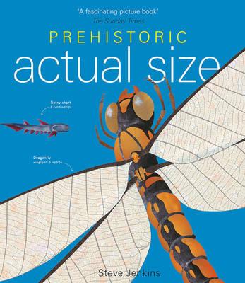 Prehistoric Actual Size (Hardback)