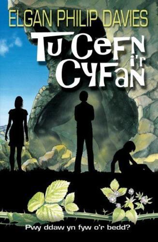 Tu Cefn i'r Cyfan (Paperback)
