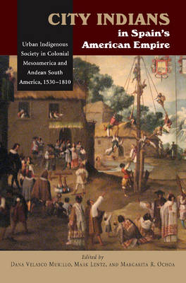 City Indians in Spain's American Empire: Urban Indigenous Society in Colonial Mesoamerica & Andean South America, 1530-1810 (Hardback)