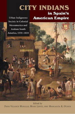 City Indians in Spain's American Empire: Urban Indigenous Society in Colonial Mesoamerica & Andean South America, 1530-1810 (Paperback)