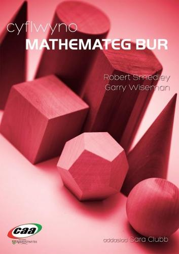 Cyflwyno Mathemateg Bur (Paperback)