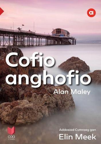Cyfres Amdani: Cofio Anghofio (Paperback)