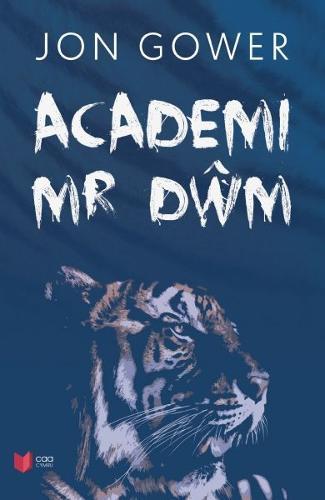 Academi Mr Dwm (Paperback)