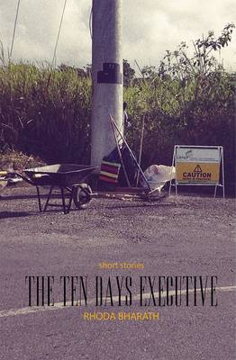 The Ten Day's Executive and Other Stories (Paperback)