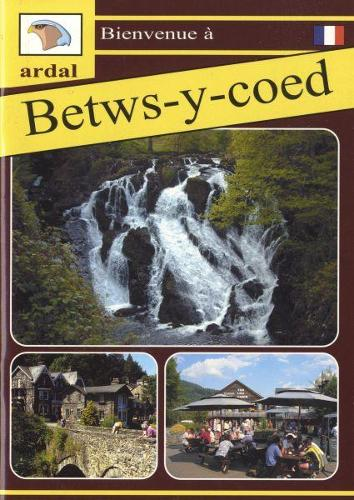Bienvenue - Betws-y-Coed (Ffrangeg) (Paperback)