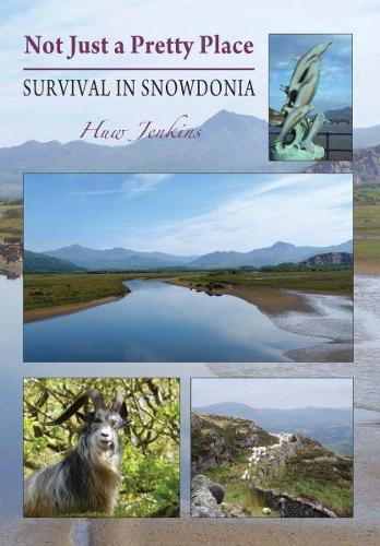 Not Just a Pretty Place - Survival in Snowdonia (Paperback)