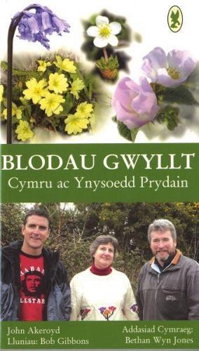 Blodau Gwyllt Cymru ac Ynysoedd Prydain (Paperback)