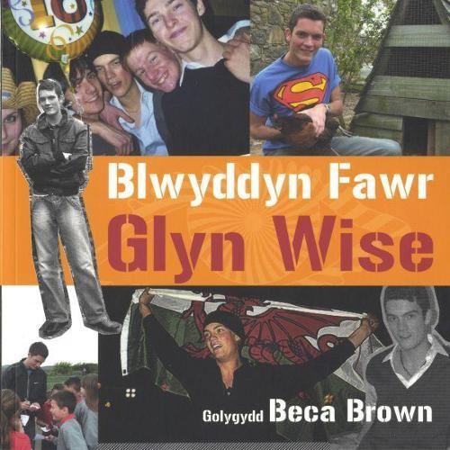 Blwyddyn Fawr Glyn Wise (Paperback)