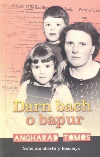 Darn Bach o Bapur (Paperback)