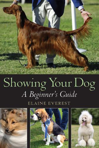 Showing Your Dog: A Beginner's Guide (Paperback)