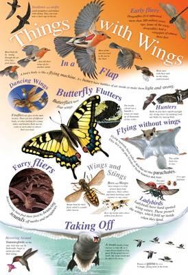 Things with Wings - Natural History Wallchart (Wallchart)