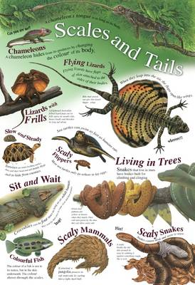 Scales and Tails - Natural History Wallchart (Wallchart)