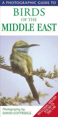 A Photographic Guide to Birds of the Middle East: Including Species Found in the UAE - Photographic Guides (Paperback)