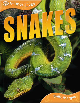 Snakes - QED Animal Lives S. (Paperback)