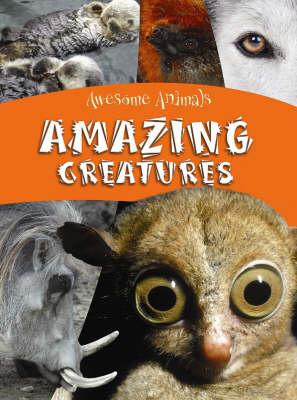 Amazing Creatures - Awesome Animals (Hardback)