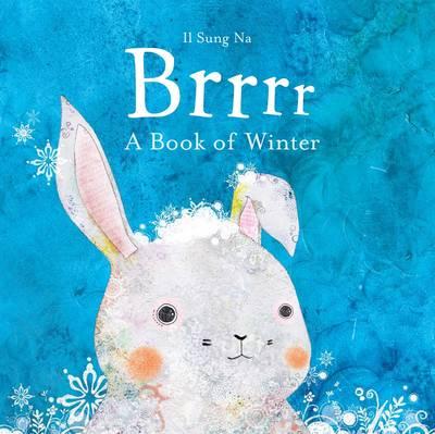 Brrrr: A Book of Winter (Board book)