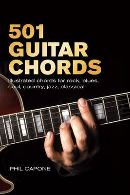 501 Guitar Chords: Illustrated Chords for Rock, Blues, Soul, Country, Jazz, Classical, Spanish (Spiral bound)