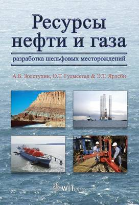 Petroleum Resources with Emphasis on Offshore Fields (Hardback)