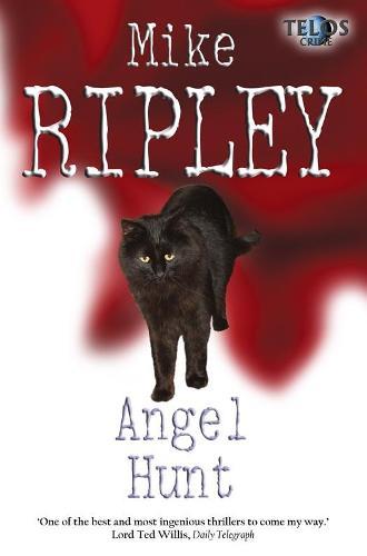 Angel Hunt - Angel Series 3 (Paperback)