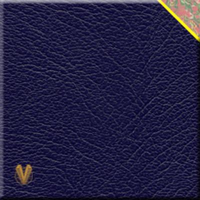 Bahamas Speed Weeks (Leather / fine binding)