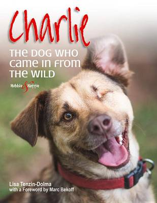 Charlie: The dog who came in from the wild (Paperback)