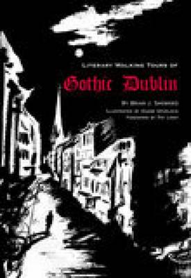 A Literary History of Gothic Dublin (Paperback)