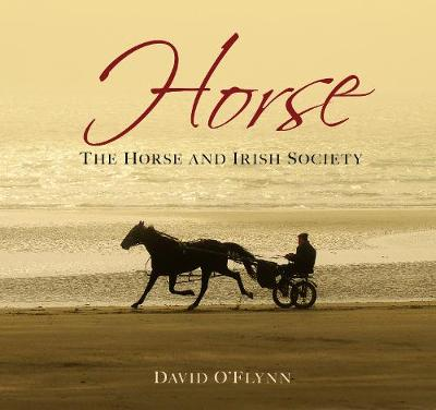 Horse: The Horse and Irish Society (Hardback)