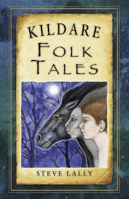 Kildare Folk Tales (Paperback)