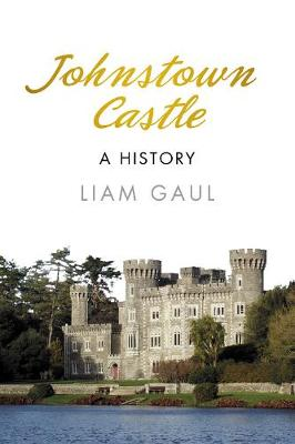 Johnstown Castle: A History (Paperback)