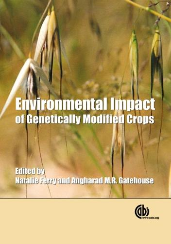 Environmental Impact of Genetically Modified Crops (Hardback)