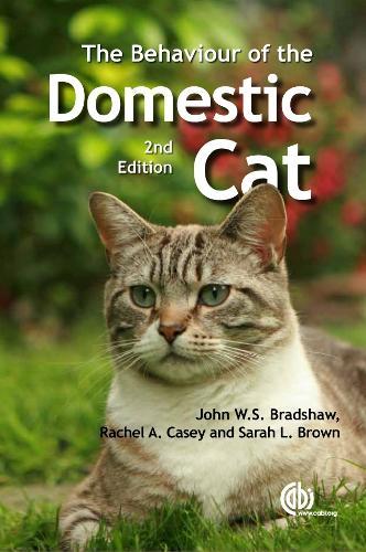 Behaviour of the Domestic Cat (Paperback)
