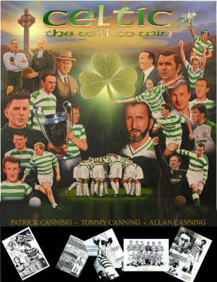 The Celtic Story (Paperback)