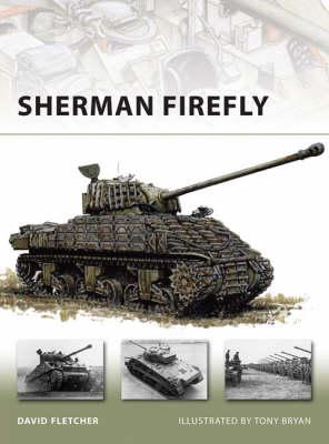 Sherman Firefly - New Vanguard No. 141 (Paperback)