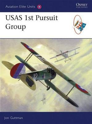 USAS 1st Pursuit Group - Aviation Elite Units No. 28 (Paperback)