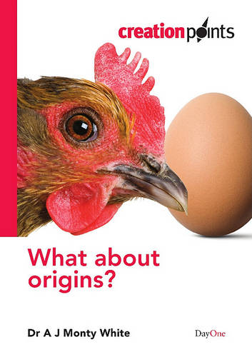What About Origins? (Paperback)