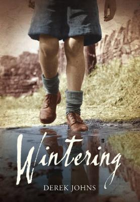 Wintering (Paperback)