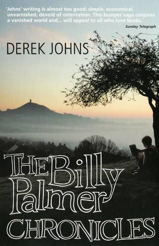 The Billy Palmer Chronicles (Paperback)