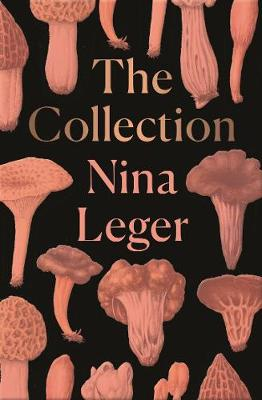 The Collection (Paperback)