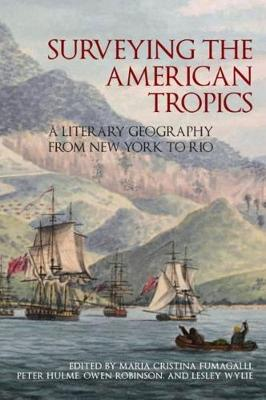Surveying the American Tropics: A Literary Geography from New York to Rio - American Tropics: Towards a Literary Geography 2 (Hardback)