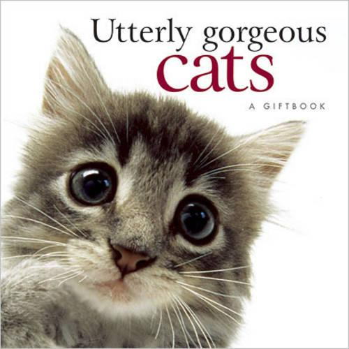 Utterly Gorgeous Cats (Hardback)